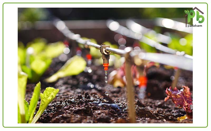 آبیاری گیاهان روف گاردن