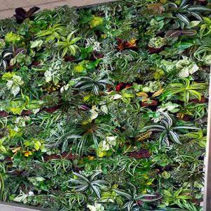 دیوارهای سبز کابلی