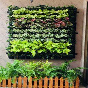 دیوارهای سبز یکپارچه
