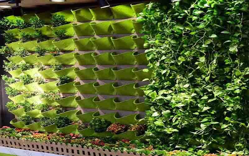 دیوار سبز نمدی