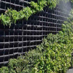 آبیاری دیوار سبز